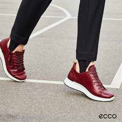 Ecco catalogue in Klang ( 22 days left )