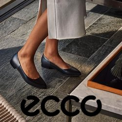 Ecco catalogue ( More than a month )