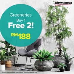 Electronics & Appliances offers in Harvey Norman catalogue ( 3 days left)