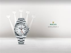 Rolex catalogue in Shah Alam ( More than a month )