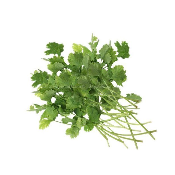 Green Growers Coriander (MYS) 50g offers at RM 2.9